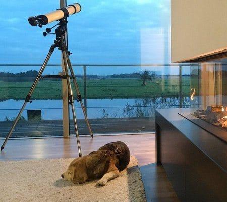 Inspirationen der urlaubsarchitektur: Für ein schönes Hundeleben