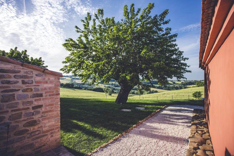 Corte Campioli – Das Leben ist eine Wundertüte: Der Maulbeerbaum