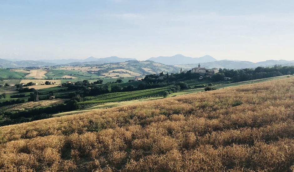 Corte Campioli – Das Leben ist eine Wundertüte: Landschaft Marken