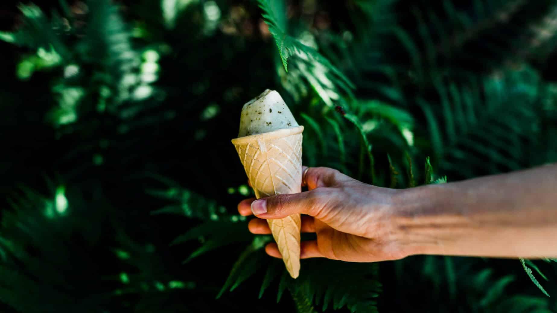 Hand hält Waffel mit Eis